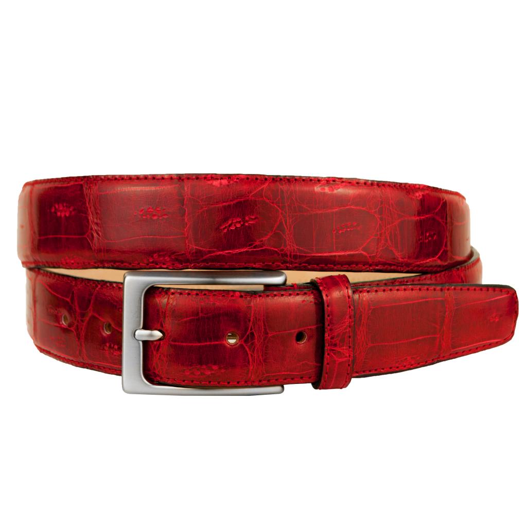 Brucle-Cintura-Rossa-Coccodrillo-Coda